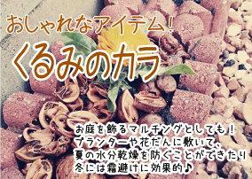 ★クルミの殻ハーフ★胡桃のカラ1袋:約5kg送料無料。北海道・九州・離島は別途送料かかります。約500gで直径20cmのプランターの表面土が隠れるぐらいです。