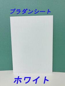 プラダンシート 910x1820 ホワイト(10枚セット)(代引き不可)
