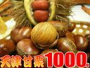 送料無料の甘栗1キロ発送当日の炒り立ての甘栗だけをお届け中♪横浜中華街のお土産にも大変喜ばれています。【楽ギフ_包装】【RCP】05P03Sep16