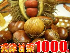 送料無料の甘栗1キロ発送当日の炒り立ての甘栗だけをお届け中♪横浜中華街のお土産にも大変喜ばれています。【楽ギフ_包装】【RCP】