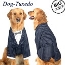 犬服 犬 服 紺スーツ フォーマル タキシード 男の子 誕生日 結婚式 イベント ドッグウエア 大型犬 ネイビー