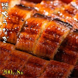 中国産うなぎ 特大蒲焼き(200g×8パック(8〜10人前)) 鰻 ウナギ 丑の日 土用 お中元 タレ付き 山椒付き ギフト お中元