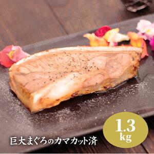 巨大マグロ カマ カット済み まぐろ 鮪 約1.3kg かま プレーン まぐろステーキ 送料無料 お中元 御中元