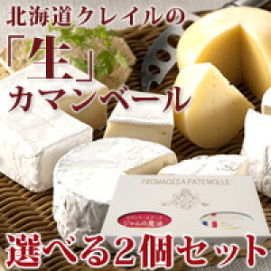 チーズ 詰め合わせ セット★2種類から自由に選べます★北海道クレイルさんの本場フランス仕込みの極上「生」カマンベールチーズ【クレイルチーズ選べる2個セット】ギフト 贈答用 贈り物