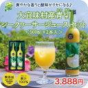 大宜味村産 青切(あおぎり) シークヮーサー ジュース 100% 500ml 2本 セット高級 贈答...
