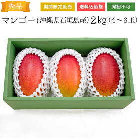 【送料無料】石垣島産 マンゴー・アーウィン種 約2kg(4〜6玉)