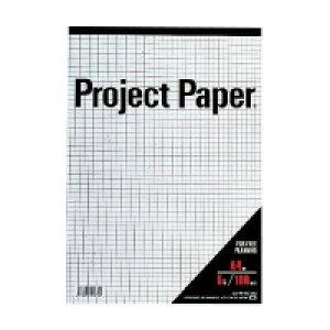 オキナ プロジェクトペーパー A4 5mm方眼 100枚 (PPA45S)