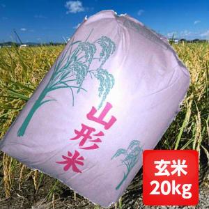 【送料無料】30年産山形県産はえぬき玄米20kg【沖縄・別途1000円加算】