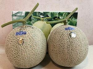 アールスメロン 高知県産メロン 高級メロン 2玉 フルーツ 贈答品 めろん ギフト 贈答用