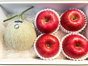 【お中元ギフト】【メロン&リンゴ】果物詰め合わせ 果物ギフト 贈答用果物 高知県産メロン/青森産サンフジりんごの詰め合わせ フルーツ詰め合わせ 贈答品 季節の果物詰め合わせ
