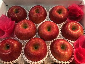 長野県産りんご サンふじ 秀品 美味しいリンゴ 長野 果物詰め合わせギフト 贈答用