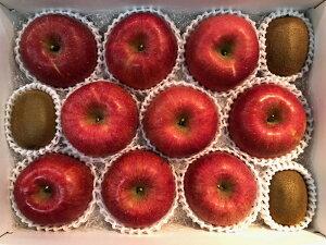 長野県産りんご サンふじ 秀品28玉 キウイ3個セット 美味しいリンゴ 果物詰め合わせギフト 贈答用