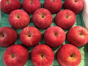 青森県産りんご サンふじ 秀品 美味しいリンゴ 果物詰め合わせギフト 贈答用