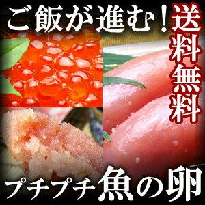 【送料無料】プチプチ魚の卵 明太子・ たらこ・ イクラ 3点セット【ギフト】