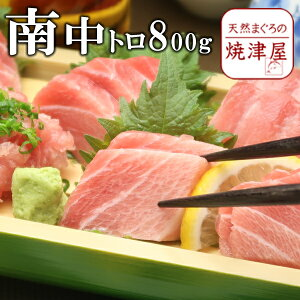 ミナミマグロ(南まぐろ) 中とろ 8人前 約800g 極上品 天然物 【送料無料】北海道沖縄へは700円加算 敬老の日 ギフト 食べ物 海鮮 グルメ おつまみ お取り寄せ 酒の肴 プレゼント