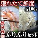 【静岡逸品】生しらす100g&生桜えび100g【ギフト】