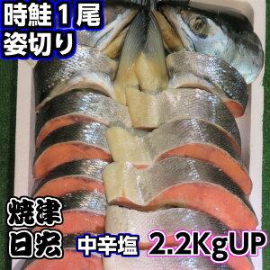 【送料無料】天然とき鮭 美味しい時鮭 ときしらず 天然北洋産 おもてなしの鮭 ごはんのお供 和食は養殖より断然天然鮭 鮭と言えば時鮭です ときしらず姿切り お中元 お歳暮 懐