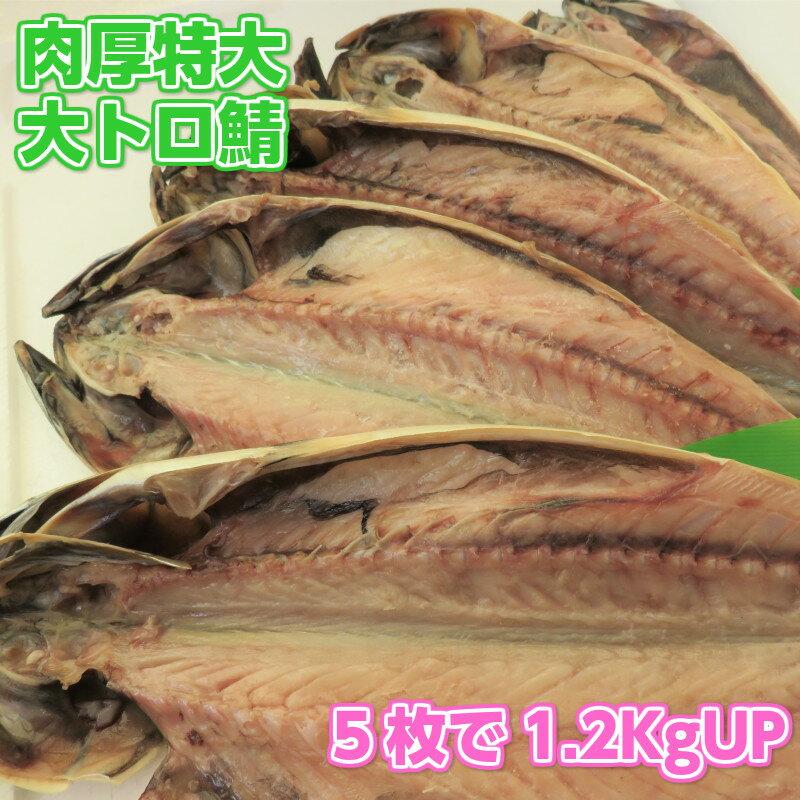 特大肉厚大トロ鯖5枚 天然無添加自然食品 さば一夜干し 美味しいとろサバ さけのさかな 酒の肴 美味しい干物 ご飯のお供 鯖 BBQ用 ギフト用包装いたします。