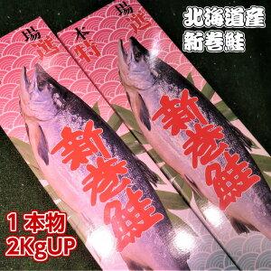 【送料無料】 北海道産新巻きサケ1尾 2KgUP 丸ごと1本物 化粧箱入 お歳暮 贈り物 お祝 お正月につきもの 北海道の味 絶品の新巻き鮭 塩焼き以外いろいろな料理に使えます 天然鮭