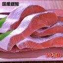 2020年新物入荷 極上国産銀鮭 5切れ 【鮭 銀鮭 シャケ しゃけ 銀鮭切り身 鮭切り身 甘塩鮭切り身 魚 塩焼き ご飯の…