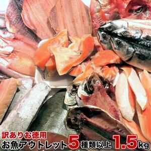 【訳ありお徳用】お魚アウトレット 5種類以上 1.5kg以上 送料無料 お酒のあてに最高 BBQ ごはんのお供 訳アリ干物 訳あり魚の切り身 ワケアリ入荷 絶品訳アリ