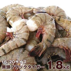 【送料無料】業務用 加熱用 無頭エビ ブラックタイガー 1.8kg 16/20サイズ (64尾〜80尾)