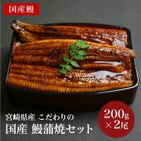 宮崎県産こだわりの国産鰻蒲焼セット【国産うなぎ200g×2尾】