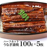 うなぎ蒲焼(中国産)100gハーフカット5枚【ギフト用包装いたします。】【土用の丑の日】【父の日】