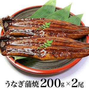 特大うなぎ蒲焼200gx2尾 【ギフト用包装いたします。】ウナギ 鰻 蒲焼き うなぎ 贈り物 ギフト プレゼント グルメ 父の日 お中元 お歳暮 土用丑の日 国産ではございませんがコスパ抜群 中国