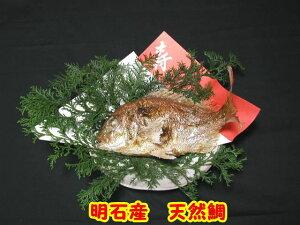 明石名産【魚秀の焼鯛】天然・明石鯛・生の時900g位