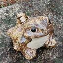 信楽焼 カエル/置物/縁起物/カエル/お庭/玄関先/陶器蛙/焼き物/陶器/進物/蛙/かえる/信楽焼/かわいい/7号蛙[ka-0004]