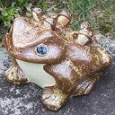 信楽焼12号五匹子付き蛙!(むかえる)/お庭に玄関先に陶器蛙!やきもの/陶器/しがらきやき/蛙/陶器かえる/信楽焼カエル/[ka-0022]