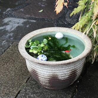 13, Ash glaze thousand corrugated water bowls! Shin Raku suiren pots! Ideal for fish bowls, fish bowl! Water lilies pots / pottery water lily pot / Lotus pots / already pot / medaka pots / pots / pottery / water coupled pots / water bowl / water lilies p