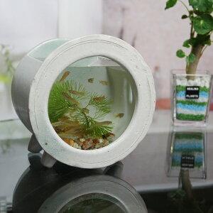 信楽焼 水槽 丸型小(白色)陶器水槽 陶器とガラスがコラボ インテリア水槽 金魚鉢 メダカ鉢 陶器 水鉢 めだか鉢 信楽焼金魚鉢 鉢 はす鉢 睡蓮鉢 su-0211