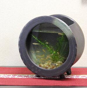 信楽焼 水槽 丸型(茶色)陶器水槽 陶器とガラスがコラボ インテリア水槽 金魚鉢 メダカ鉢 陶器 水鉢 めだか鉢 信楽焼金魚鉢 鉢 はす鉢 睡蓮鉢 su-0123