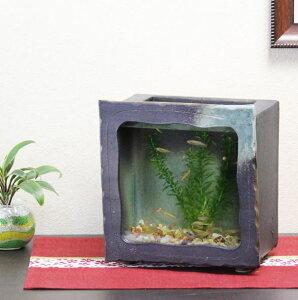 信楽焼 水槽 角型(茶色)陶器水槽 陶器とガラスがコラボ インテリア水槽 金魚鉢 メダカ鉢 陶器 水鉢 めだか鉢 信楽焼金魚鉢 鉢 はす鉢 睡蓮鉢 su-0124