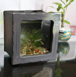 信楽焼 水槽 角型小(茶色)陶器水槽 陶器とガラスがコラボ インテリア水槽 金魚鉢 メダカ鉢 陶器 水鉢 めだか鉢 信楽焼金魚鉢 鉢 はす鉢 睡蓮鉢 su-0212