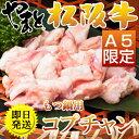 ギフト 肉 牛肉 肉 もつ鍋用-ホルモン (コプチャン460g) 松阪牛やまと
