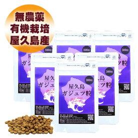 屋久島 紫ウコン ( ガジュツ ) 粒 300粒 6袋 セット 【 屋久島産 送料無料 無農薬 有機栽培 ダイエット サポート サプリメント 】