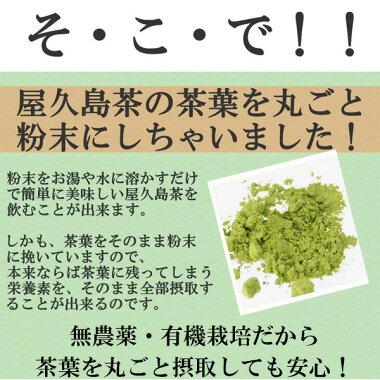 屋久島茶の一番茶の茶葉を丸ごと粉末にしました。茶葉に残った栄養素を全て摂取できます。無農薬なので安全です。