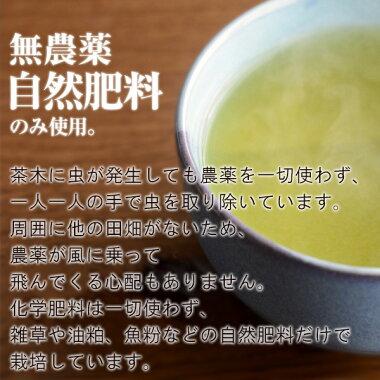 農薬も化学肥料も一切使わずに自然肥料だけで栽培した有機栽培茶です。
