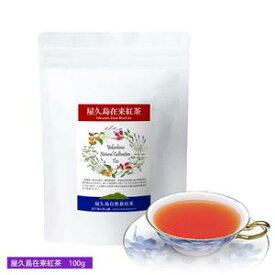 《私たちが作った屋久島自然栽培茶です》屋久島在来紅茶(茶葉100g)/茶葉