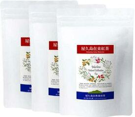 《私たちが作った屋久島自然栽培茶です》屋久島無農薬在来紅茶(茶葉100g×3)/茶葉