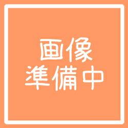 小島漢方 ガイハク がいはくらっきょう 薤白 500g【RCP】