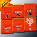Giants risuto 1