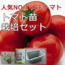 野菜栽培セットトマト栽培セットベランダ、軒下などに