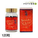 ヤマサカオイスター 120粒 広島産生かき100% 国産 若々しくいたい お酒を飲む機会が多い ハリ、コシが欲しい方 タウリン 亜鉛 グリコ…