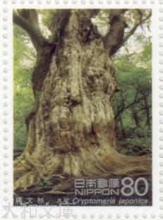 【記念切手】 第1次世界遺産シリーズ 第3集A「屋久島・縄文杉」1995年 (平成7年)【切手シート】