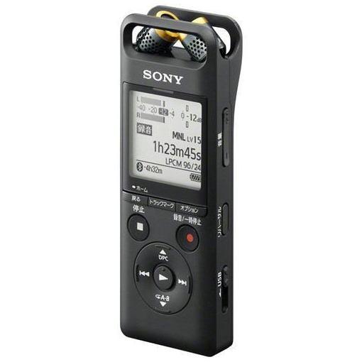 ソニー PCM-A10C ハイレゾ対応リニアPCMレコーダー 16GB B