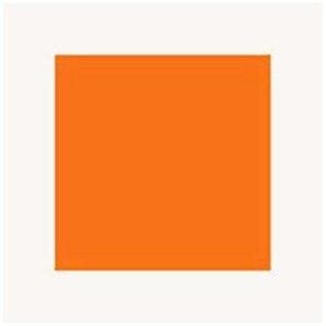 Mr.カラー クリアーオレンジ 10ml C49